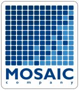 SKATE / MOSAIC